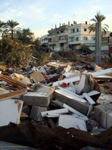destruction-zaitoun-jan-129