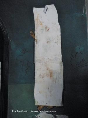 DSCN4444 (480x640) fresco