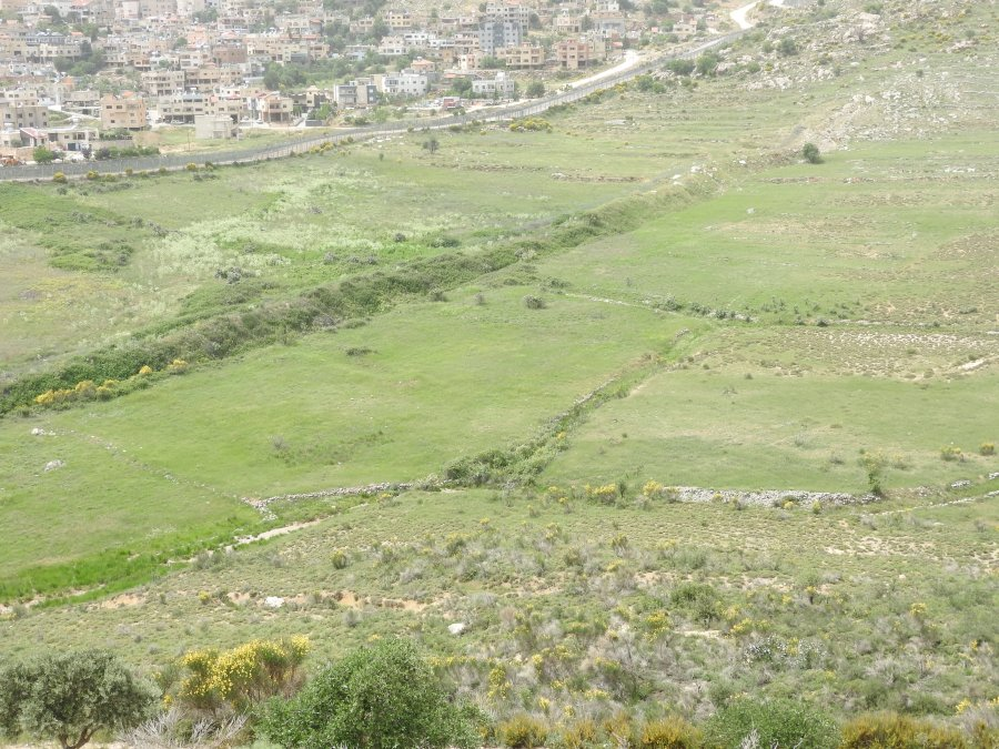 According to Hadar resident Mahmoud Taweel farmers are prohibited from farming near the fence
