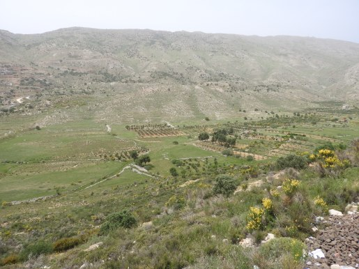 Farmland which owners in occupied Majdal Shams can not access
